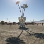 Robert James Burning man