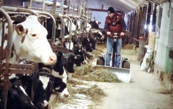 Segway à la ferme