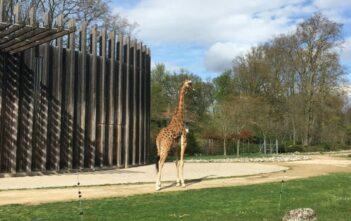 Les animaux du Parc de la Tête d'Or à Lyon