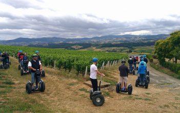 Team Bulding - Balade dans les vignes du Beaujolais