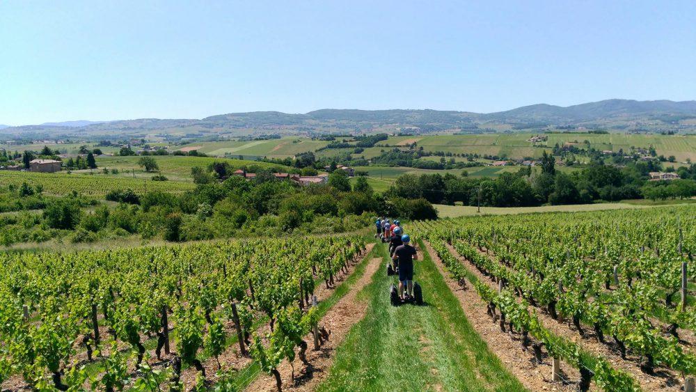 Team Bulding - Dans les vignes du beaujolais