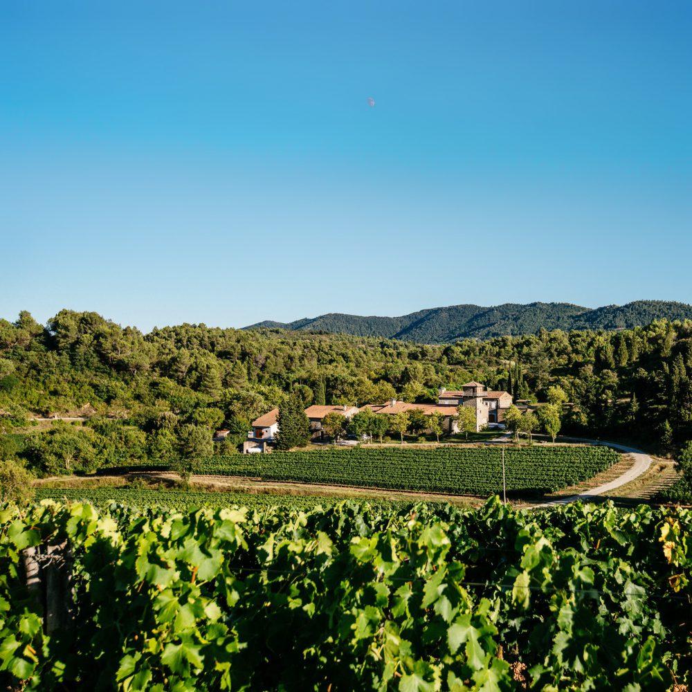 Vignobles de Carcassonne : circuit Mobilboard