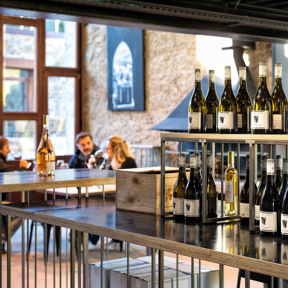 Circuit Segway : Dégustation vins Carcassonne