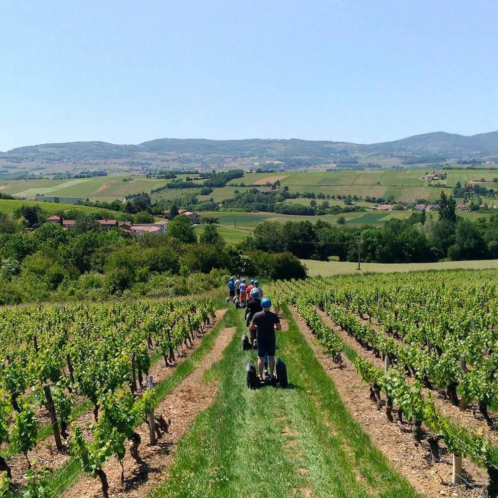 Découverte dégustation vignobles de Villefranche
