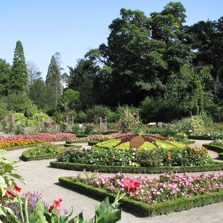 Visiter la Vallée Du Rhône : Jardin botanique Lyon